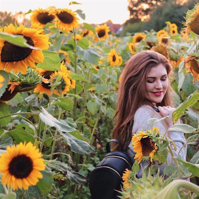Happy Friday ihr Lieben!  Wer liebt sonnenblumen genauso sehrhellip