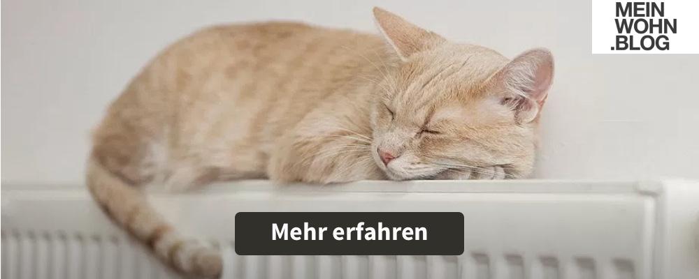 meinwohn-blog-01
