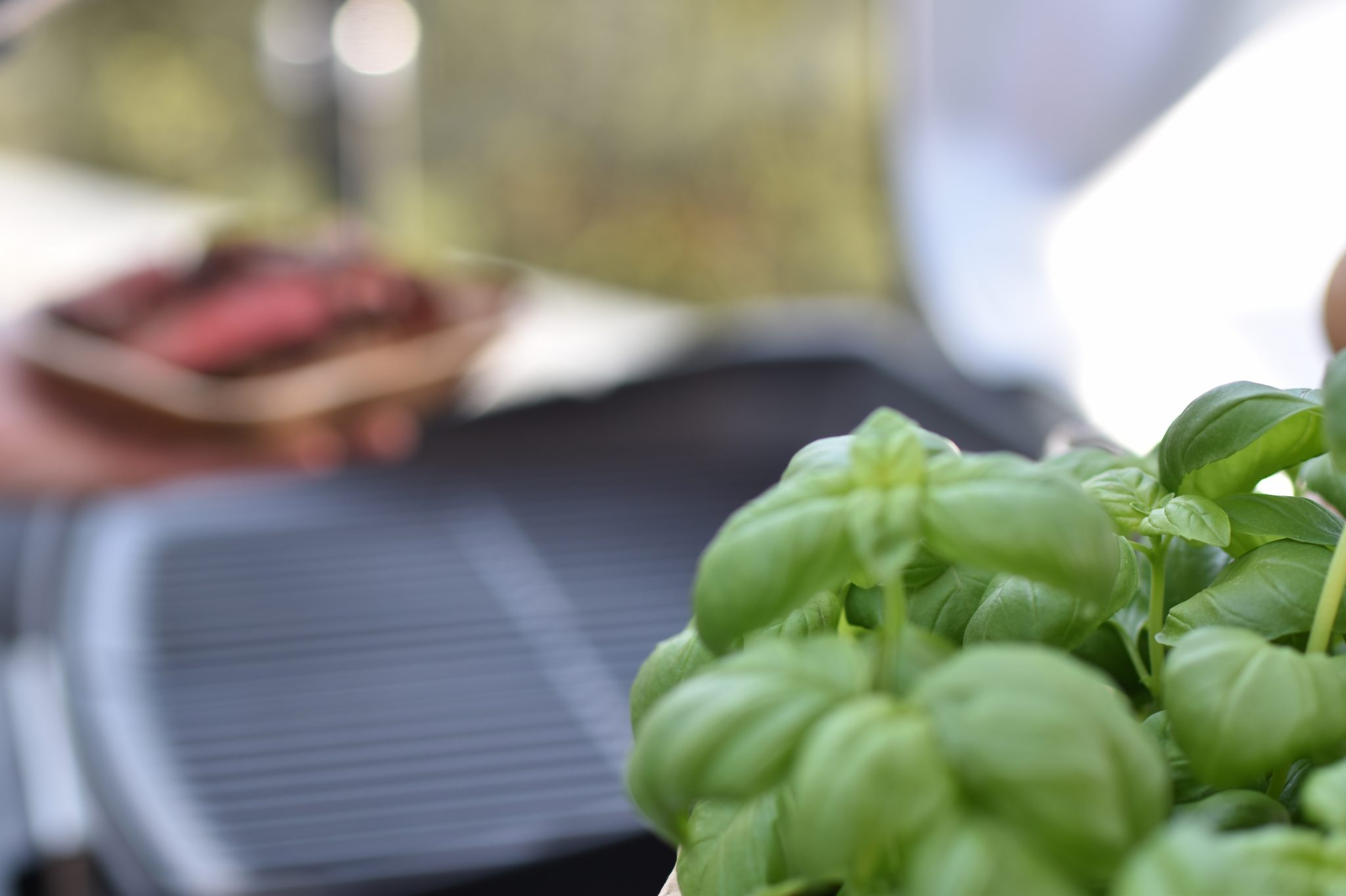 weber-grill-warum